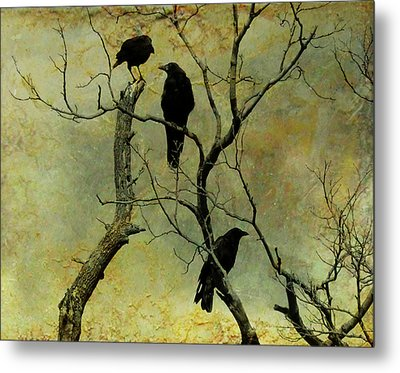 Secretive Crows Metal Print by Gothicrow Images