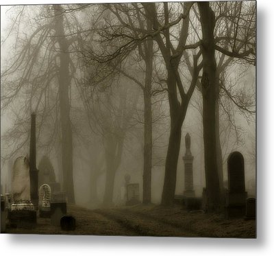 Seeped In Fog Metal Print by Gothicolors Donna Snyder