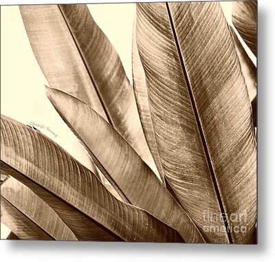 Sepia Leaves Metal Print by Cheryl Young