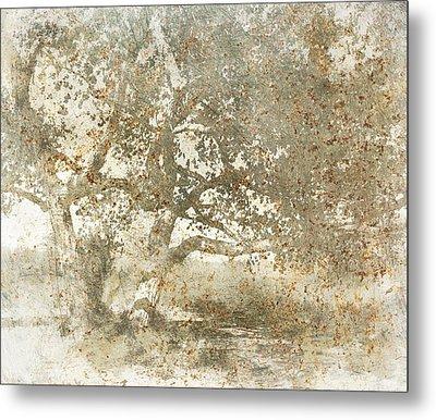 Shade Tree Metal Print by Brett Pfister