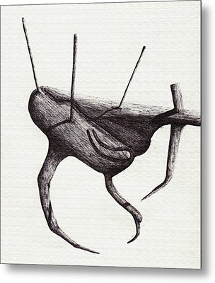 Shadows Terrestrial Metal Print by Giuseppe Epifani