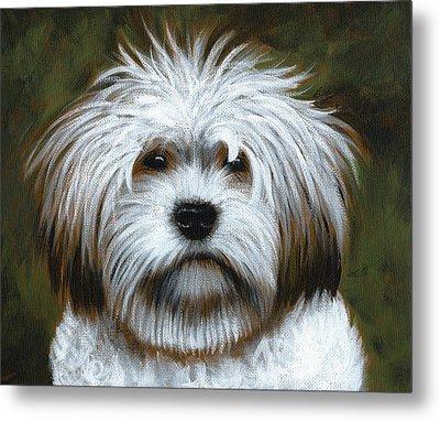 Shaggy ... Dog Art Painting Metal Print by Amy Giacomelli