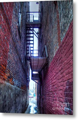 Shared Escape Metal Print by MJ Olsen