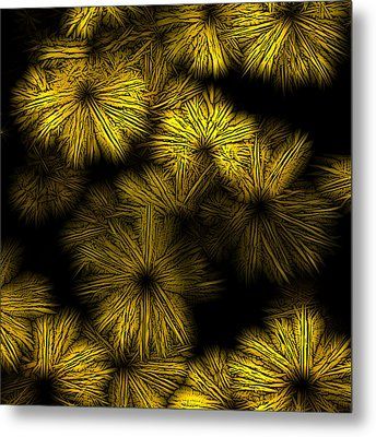 Shattered Daisy 2 Metal Print by Patricia Keith
