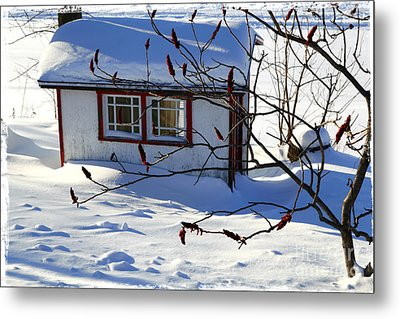 Shed In Winter Metal Print by Sophie Vigneault