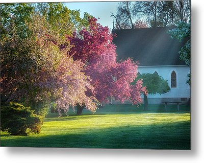 Shine The Light On Me Metal Print by Bill Wakeley