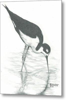 Shore Bird Metal Print by Sharon Blanchard