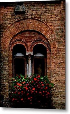 Sienna Window Metal Print by Patrick J Osborne