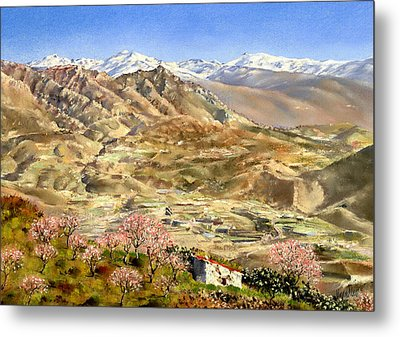 Sierra Nevada With Almond Blossom Metal Print by Margaret Merry