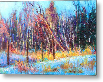Signs Of Spring - Trees And Snow Kissed By Spring Light Metal Print by Talya Johnson