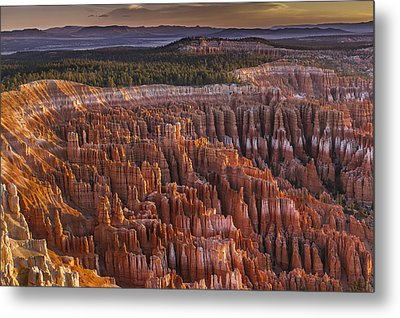 Silent City - Bryce Canyon Metal Print by Eduard Moldoveanu