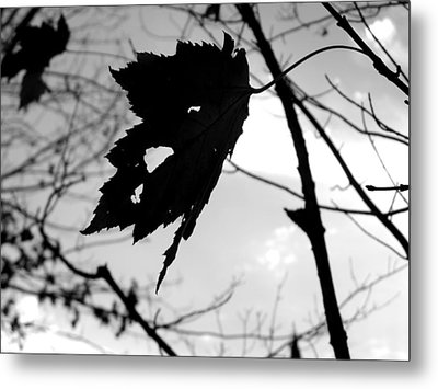 Silhouette Metal Print by Allison Tilberg
