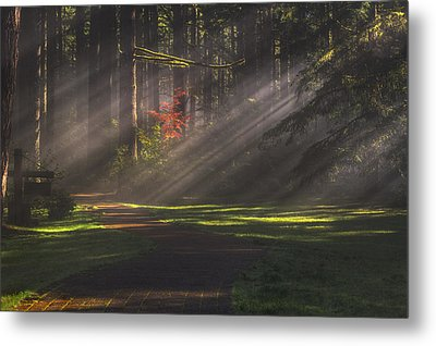 Silver Falls Historic District Metal Print by Mark Kiver