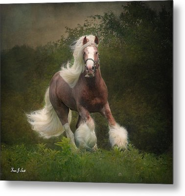 Simon And The Storm Metal Print by Fran J Scott