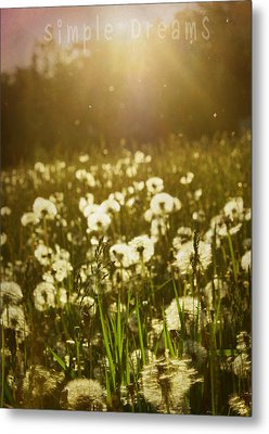 Simple Dreams Metal Print by JC Photography and Art