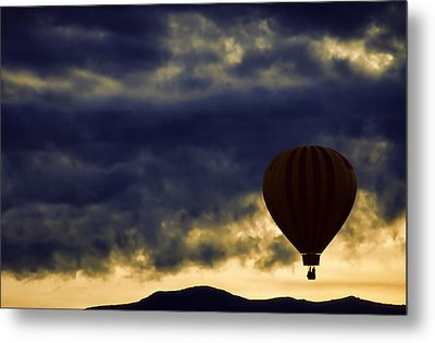 Single Ascension Metal Print by Carol Leigh