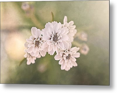 Sisters Metal Print by Faith Simbeck