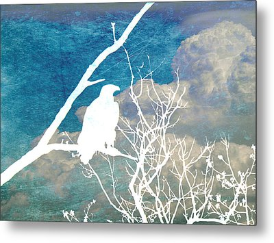 Sitting Watching Waiting Metal Print by Candace Fowler