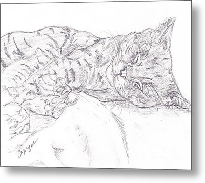 Sleeping Cat Metal Print by Caitlin  Wells