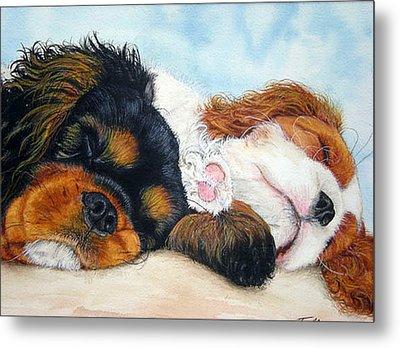 Sleeping Cavalier Puppies Metal Print by Toulla Hadjigeorgiou