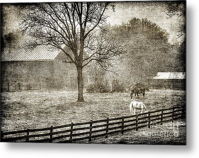 Small Farm In West Virginia Metal Print by Dan Friend