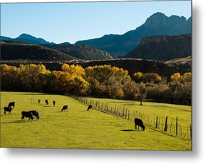 Smithsonian Butte And Two Feathers Ranch Early Fall On The Virgin River Rockville Utah Metal Print by Robert Ford
