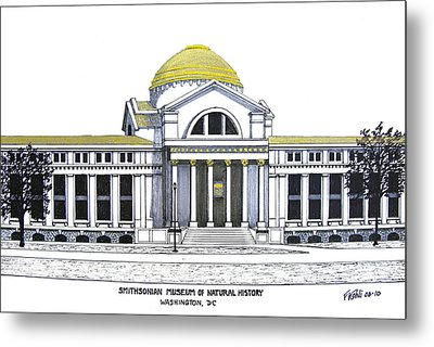 Smithsonian Museum Of Natural History Metal Print by Frederic Kohli