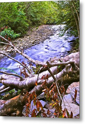 Smoky Mountain Stream Two Metal Print by Frozen in Time Fine Art Photography