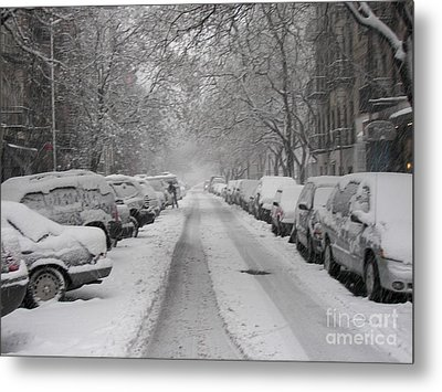 Snow Cover Metal Print by James Dolan