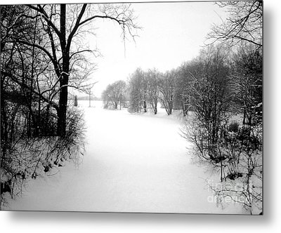 Snow Covered Herrick Lake 1981 Metal Print by ImagesAsArt Photos And Graphics