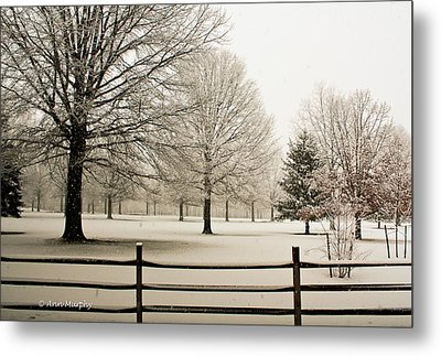 Snow-covered Landscape Metal Print by Ann  Murphy
