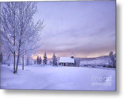Snow Day Metal Print by Kristal Kraft