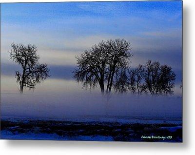 Snow Fog Metal Print by Rebecca Adams