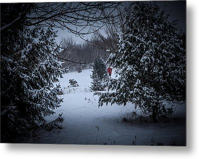 Snow In The Meadow Metal Print by Cheryl Swift