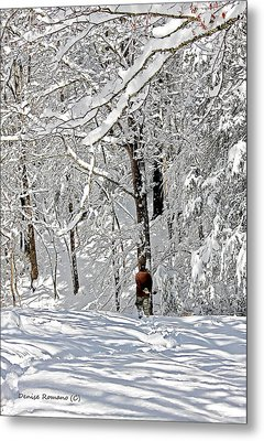 Snow Walking Metal Print by Denise Romano