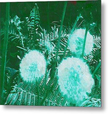Snowballs In The Garden Metal Print by Pepita Selles
