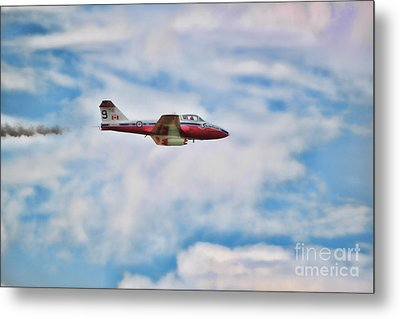 Snowbirds Number 9 Metal Print by Cathy  Beharriell