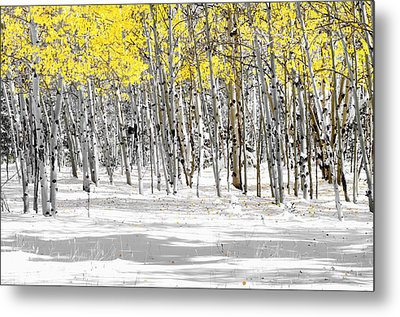 Snowy Aspen Landscape Metal Print by The Forests Edge Photography - Diane Sandoval