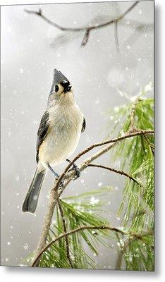 Snowy Songbird Metal Print by Christina Rollo