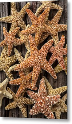 So Many Starfish Metal Print by Garry Gay