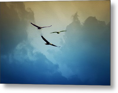 Soaring Eagles Metal Print by Bill Cannon