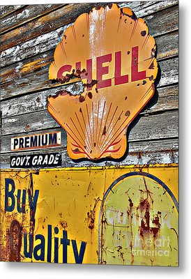 Soft Shell Metal Print by Lee Craig