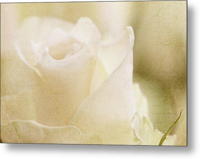 Softly Now Metal Print by Margaret Hormann Bfa