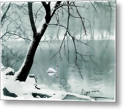 Solitude Metal Print by Jessica Jenney