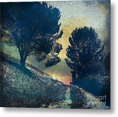 Somber Passage Metal Print by Bedros Awak