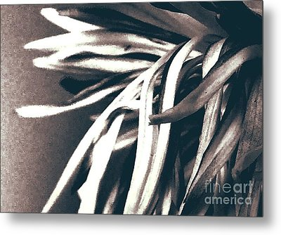 Somberity  Metal Print by Thommy McCorkle