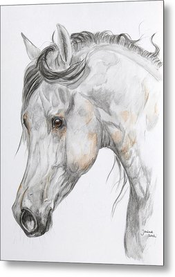 Son Of The Wind Metal Print by Janina  Suuronen