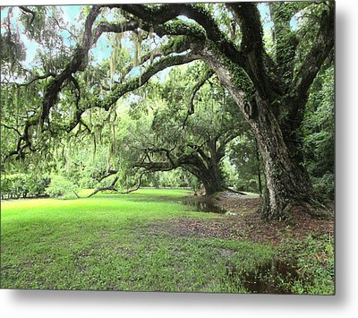 Southern Comfort Metal Print by Silvie Kendall