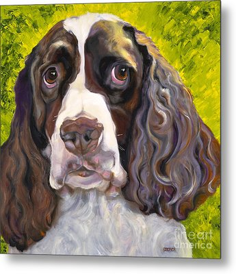 Spaniel The Eyes Have It Metal Print by Susan A Becker