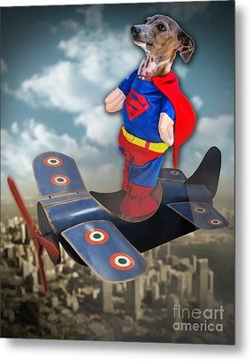 Speedolini Flying High Metal Print by Kathy Tarochione